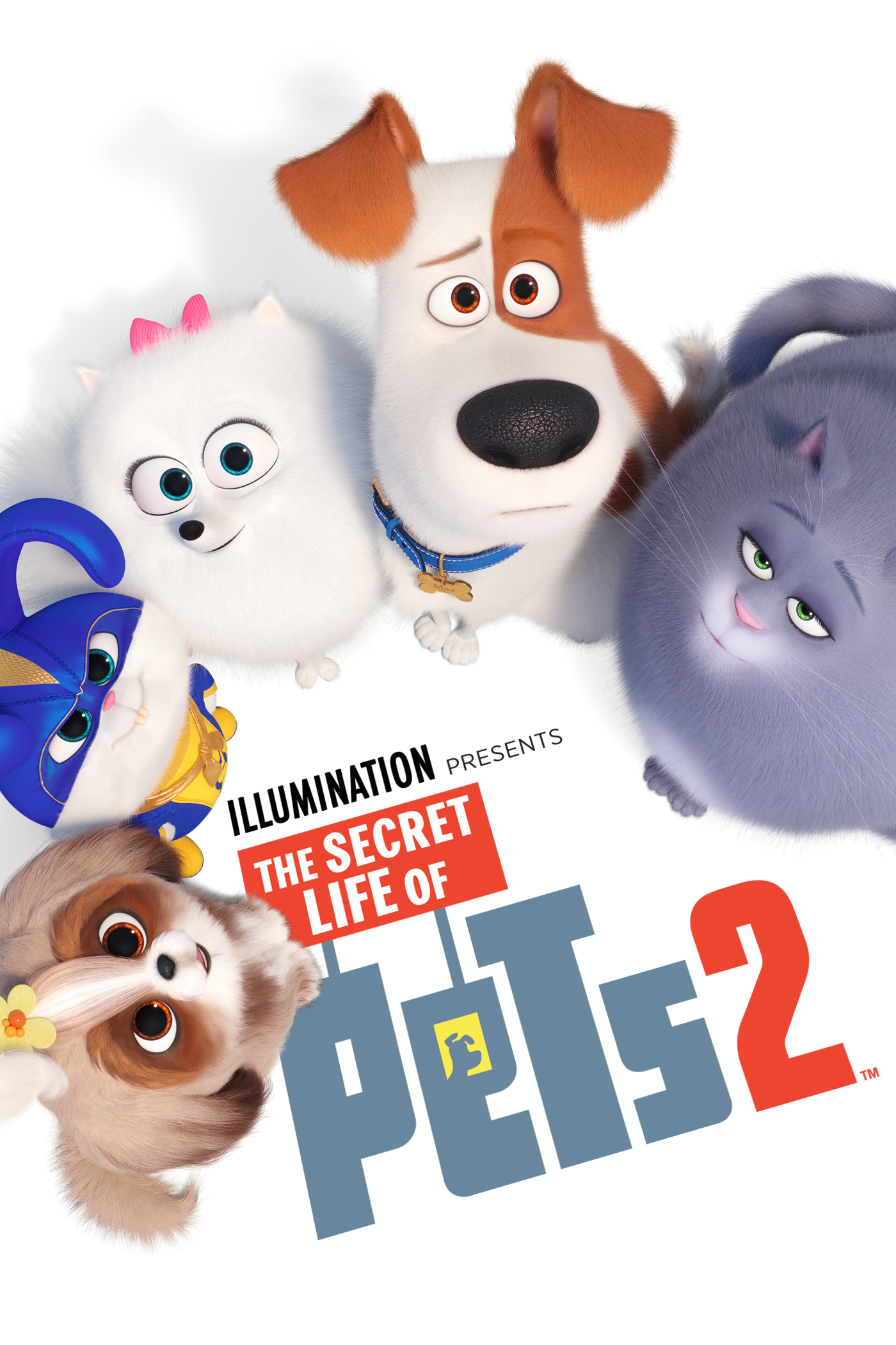 The Secret Life of Pets 2 | Buy, Rent or Watch on FandangoNOW