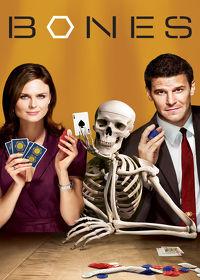 Watch Bones: Season 3 Episode 8 - The Knight on the Grid  movie online, Download Bones: Season 3 Episode 8 - The Knight on the Grid  movie