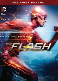 Watch The Flash: Season 1 Episode 1 - Pilot  movie online, Download The Flash: Season 1 Episode 1 - Pilot  movie