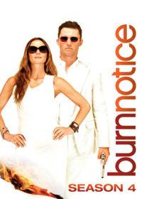 Watch Burn Notice: Season 4  movie online, Download Burn Notice: Season 4  movie