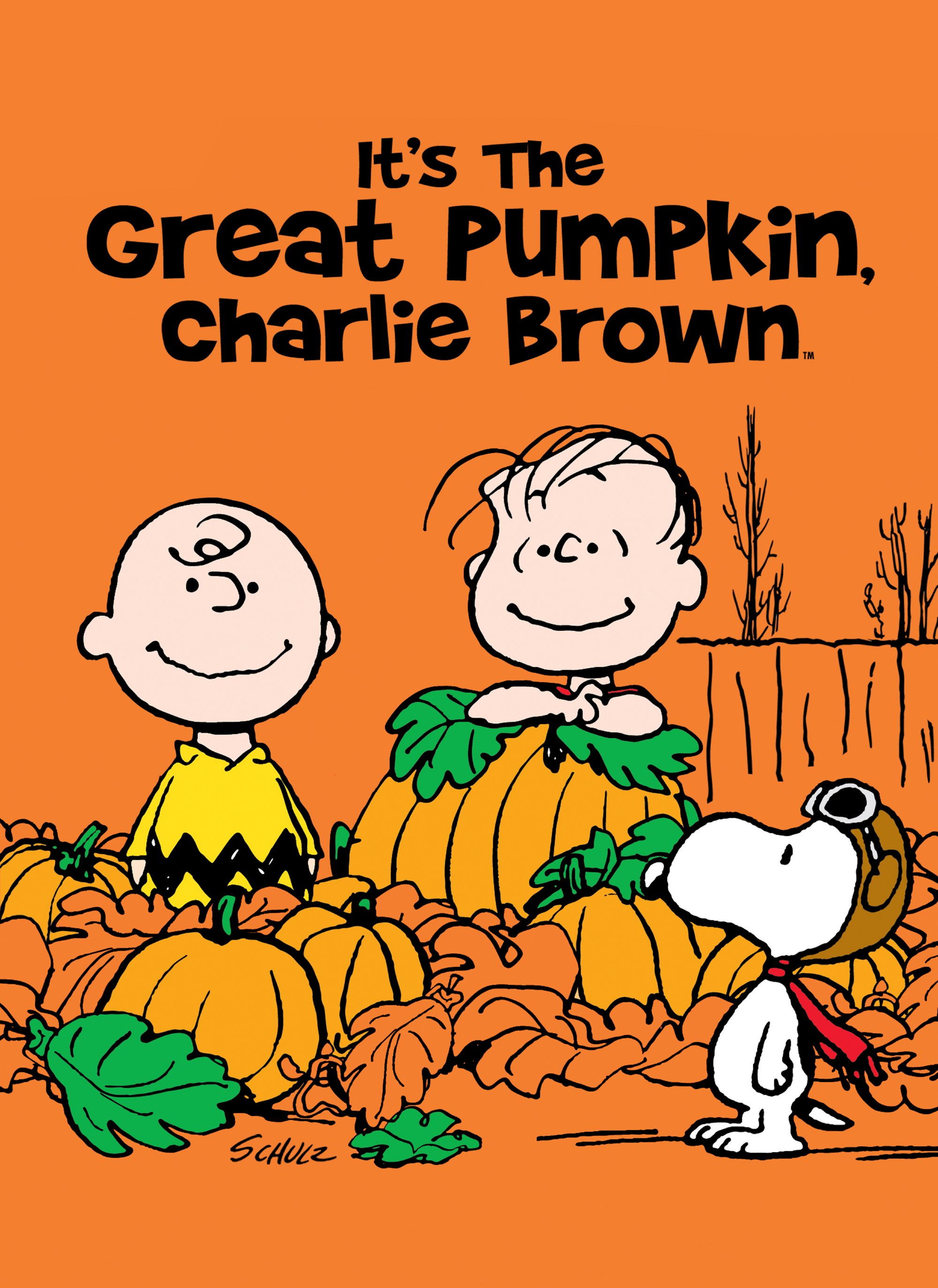 It's the Great Pumpkin, Charlie Brown (+2 Specials)
