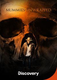 Watch Mummies Unwrapped: Season 1 Episode 4 - Stolen Fortune of the Pirate Mummy  movie online, Download Mummies Unwrapped: Season 1 Episode 4 - Stolen Fortune of the Pirate Mummy  movie