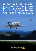 Watch Bird vs. Plane: Miracle on the Hudson 2019 movie online, Download Bird vs. Plane: Miracle on the Hudson 2019 movie