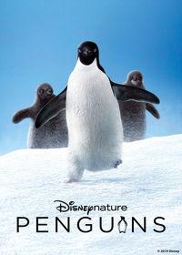Watch Disneynature: Penguins 2019 movie online, Download Disneynature: Penguins 2019 movie