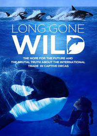 Watch Long Gone Wild 2019 movie online, Download Long Gone Wild 2019 movie