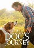 Watch A Dog's Journey 2019 movie online, Download A Dog's Journey 2019 movie