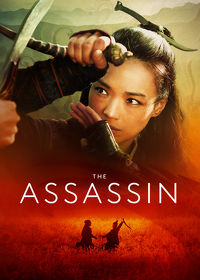 Watch The Assassin 2015 movie online, Download The Assassin 2015 movie