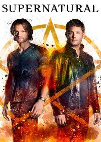 Watch Supernatural: Season 13  movie online, Download Supernatural: Season 13  movie