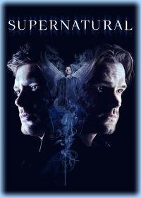 Watch Supernatural: Season 14  movie online, Download Supernatural: Season 14  movie