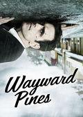 Watch Wayward Pines: Season 1  movie online, Download Wayward Pines: Season 1  movie